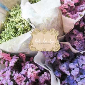 ขายส่งดอกสแตติส