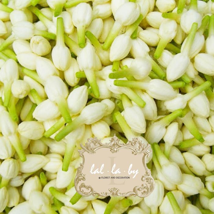 ดอกมะลิ: จำหน่าย ดอกมะลิ ราคาส่ง จัดส่งทั่วประเทศ